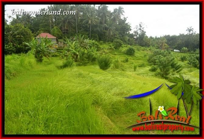 8,000 m2 Land sale in Tabanan Bali TJTB397