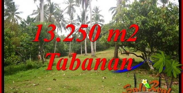 Magnificent Property Land for sale in Tabanan Bali TJTB403