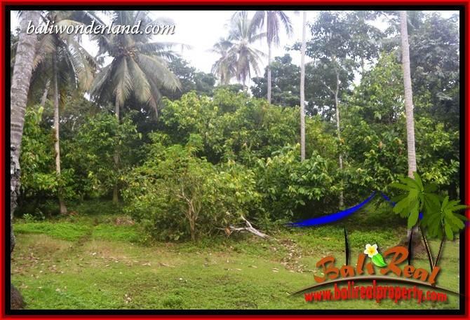 FOR sale Exotic Land in Tabanan Selemadeg Bali TJTB403