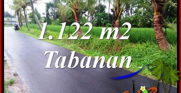 Beautiful Property Land in Tabanan Bali for sale TJTB404