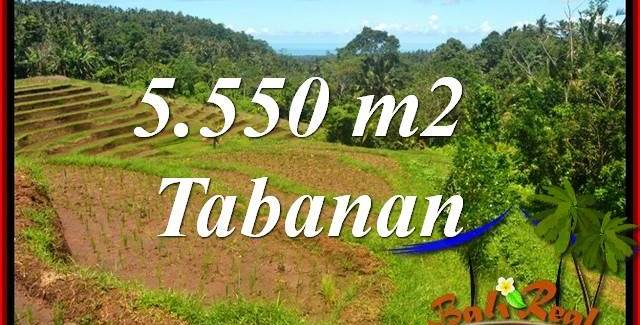 Magnificent Property Land sale in Tabanan Bali TJTB405