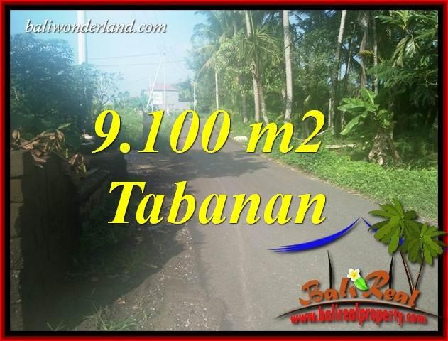 Exotic 9,100 m2 Land sale in Tabanan Bali TJTB407