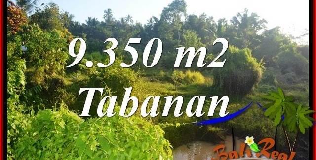 Affordable Property Tabanan Selemadeg 9,350 m2 Land for sale TJTB409