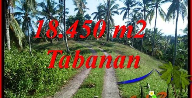 FOR sale Exotic 18,450 m2 Land in Tabanan Bali TJTB410