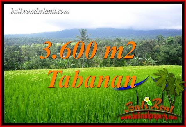 FOR sale Affordable 3,600 m2 Land in Tabanan Bali TJTB415
