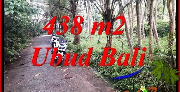 Beautiful Land for sale in Ubud Bali TJUB689