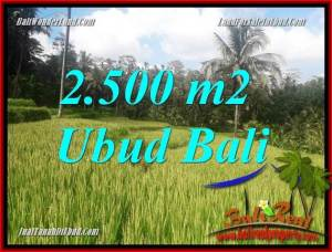 Magnificent Property 2,500 m2 Land for sale in Ubud Tegalalang Bali TJUB690