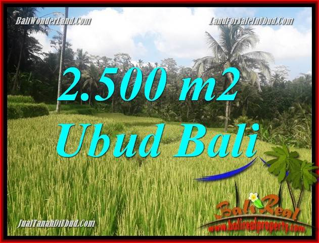 FOR sale Exotic Property 2,500 m2 Land in Ubud Tegalalang Bali TJUB690