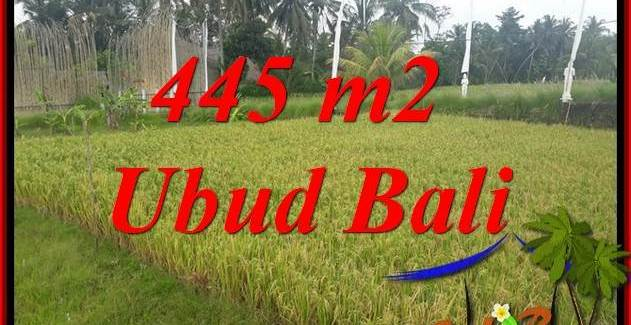 Beautiful 445 m2 Land sale in Ubud Bali TJUB695