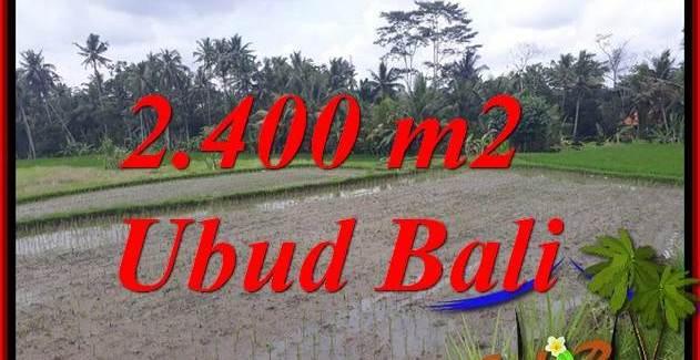 Exotic Property Ubud Bali Land for sale TJUB697