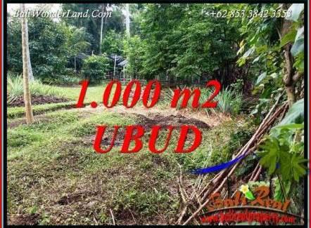 FOR sale Affordable 1,000 m2 Land in Ubud Bali TJUB712