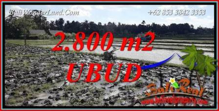 Beautiful Property 2,800 m2 Land sale in Sentral Ubud Bali TJUB722