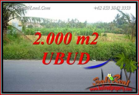 FOR sale Beautiful 2,000 m2 Land in Ubud Bali TJUB737