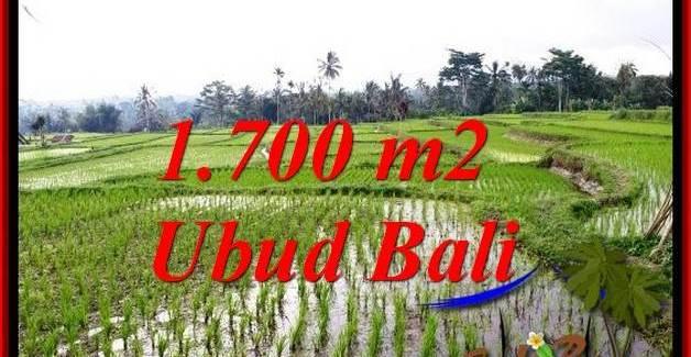 1,700 m2 LAND IN UBUD BALI FOR SALE TJUB770
