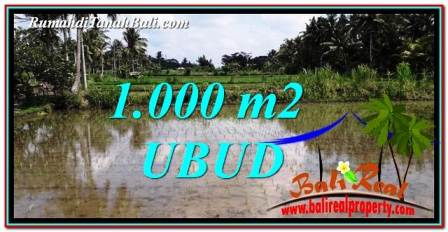 Exotic UBUD BALI 1,000 m2 LAND FOR SALE TJUB753