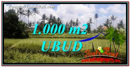 Beautiful 1,000 m2 LAND FOR SALE IN Ubud Pejeng TJUB754