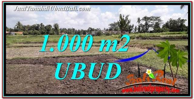 Beautiful LAND SALE IN UBUD TJUB765