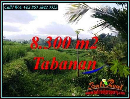 8,300 m2 LAND SALE IN PENEBEL TABANAN TJTB501