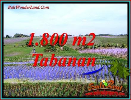 Beautiful 1,800 m2 LAND FOR SALE IN TABANAN TJTB491