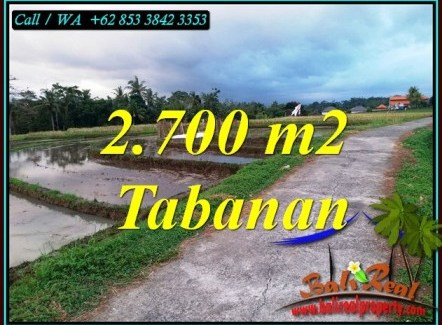 Magnificent LAND SALE IN TABANAN BALI TJTB460