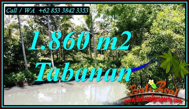 Beautiful PROPERTY 1,860 m2 LAND IN TABANAN FOR SALE TJTB467