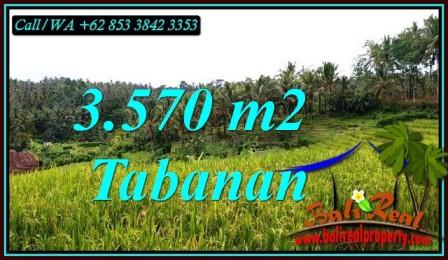 Magnificent PROPERTY SELEMADEG TIMUR LAND FOR SALE TJTB482