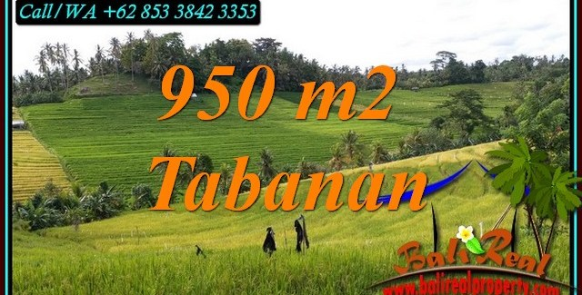 Beautiful 950 m2 LAND IN TABANAN FOR SALE TJTB483