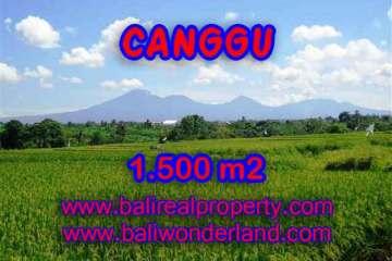 Land in Bali for sale, fantastic view in Canggu Bali – TJCG144
