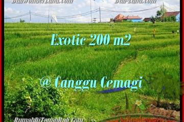 Exotic Canggu Cemagi BALI 200 m2 LAND FOR SALE TJCG170