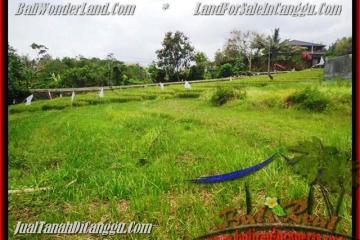 Beautiful 1.000 m2 LAND IN CANGGU FOR SALE TJCG161