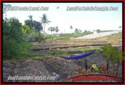 Affordable Canggu Pererenan LAND FOR SALE TJCG181