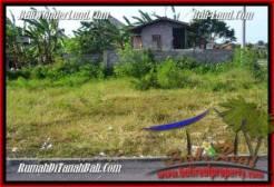 Exotic LAND SALE IN Canggu Brawa TJCG185