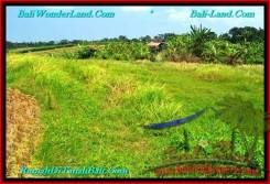 Affordable PROPERTY LAND IN Canggu Pererenan BALI FOR SALE TJCG188