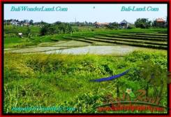 Exotic 500 m2 LAND IN CANGGU FOR SALE TJCG192