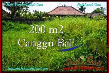 Beautiful PROPERTY LAND FOR SALE IN CANGGU TJCG190