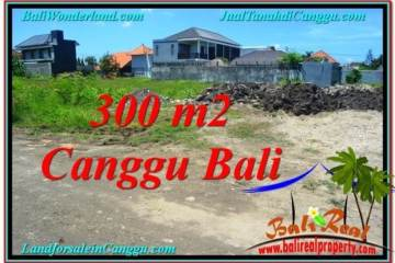 Affordable 300 m2 LAND FOR SALE IN CANGGU TJCG203