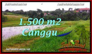 Beautiful CANGGU BALI 1,500 m2 LAND FOR SALE TJCG198