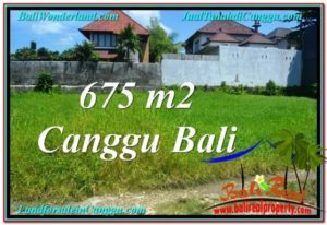 Exotic LAND IN Canggu Brawa BALI FOR SALE TJCG200