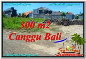 FOR SALE LAND IN Canggu Brawa TJCG203