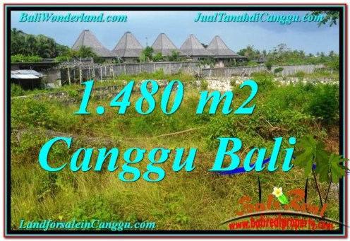 Magnificent PROPERTY 1,480 m2 LAND FOR SALE IN CANGGU BALI TJCG212