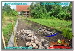 LAND IN Canggu Pererenan FOR SALE TJCG213