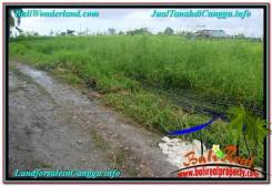 FOR SALE Magnificent LAND IN Canggu Batu Bolong TJCG215