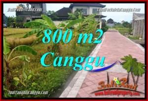 Exotic PROPERTY 800 m2 LAND SALE IN CANGGU TJCG221