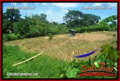 Affordable 380 m2 LAND IN CANGGU FOR SALE TJCG226