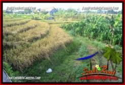 CANGGU 200 m2 LAND FOR SALE TJCG228