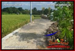 Beautiful PROPERTY 200 m2 LAND IN CANGGU BRAWA BALI FOR SALE TJCG229