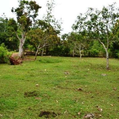 Land for sale in Jimbaran Bali - LJI016