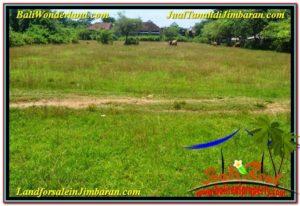 Beautiful 8,000 m2 LAND IN JIMBARAN BALI FOR SALE TJJI109