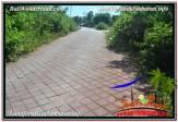 FOR SALE Exotic 1,000 m2 LAND IN JIMBARAN TJJI111