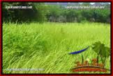 FOR SALE Exotic 900 m2 LAND IN JIMBARAN TJJI124